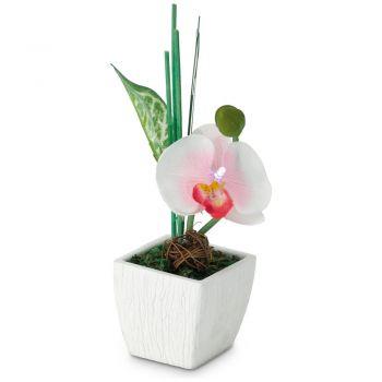 Corpuri de iluminat Topf M-Orchidee Pink  1 Led Eglo 75154